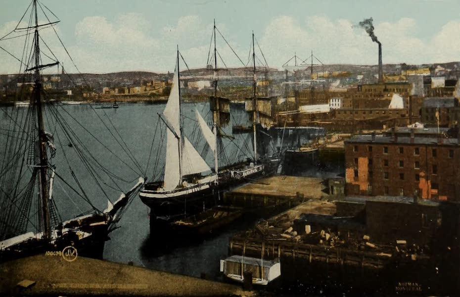 Souvenir of St. John N.B. - St. John N.B. and Harbour (1910)