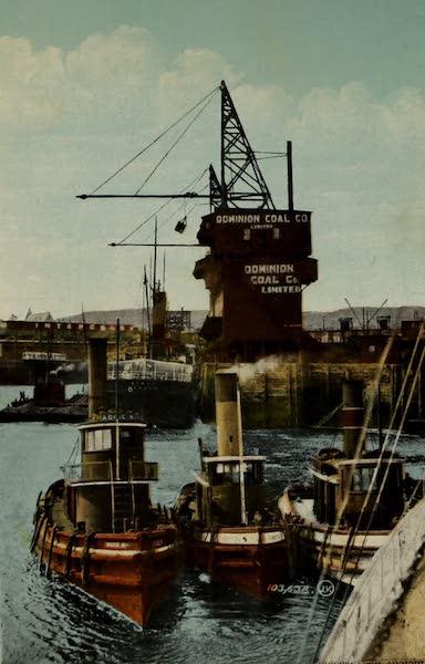 Souvenir of St. John N.B. - Scene in the Harbor (1910)