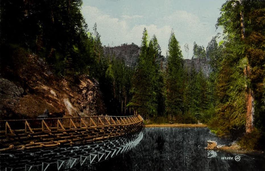 Souvenir of the Rockies [Canadian Rockies] - Drive near C.P.R. Hotel, Banff (1910)