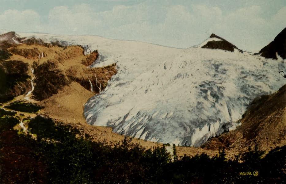 Souvenir of the Rockies [Canadian Rockies] - Great Glacier of the Selkirks, Glacier, B.C. (1910)