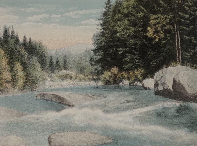 Souvenir View Book of the White Mountains - Mt. Washington and the Ammonoosuc, Bretton Woods (1923)