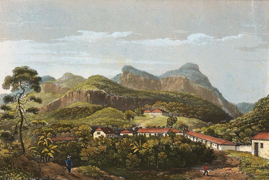 Souvenirs de Rio de Janeiro - Novo Friburgo (Colonia Suissa, ao Morro Queimado) (1835)