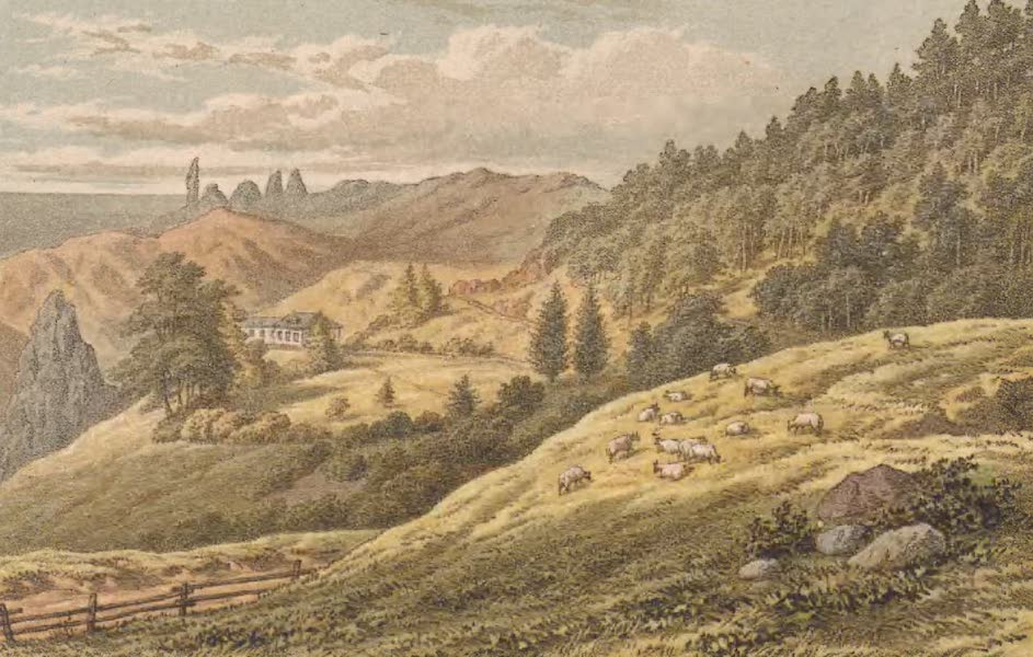 St. Helena: A Description of the Island - View in Sandy Bay (1875)
