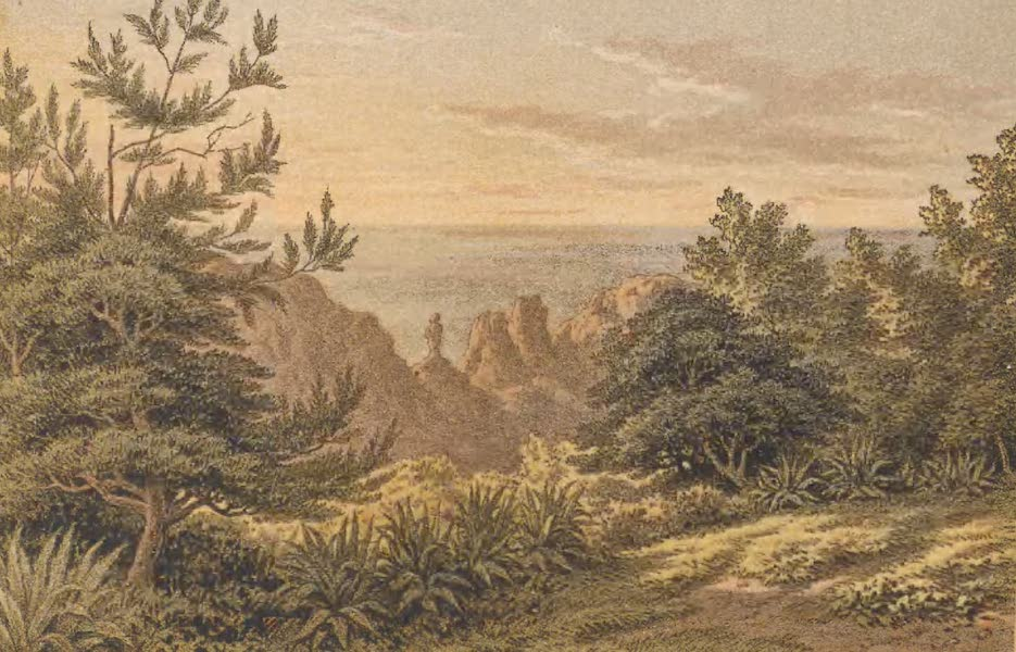 St. Helena: A Description of the Island - The Friar Rock (1875)