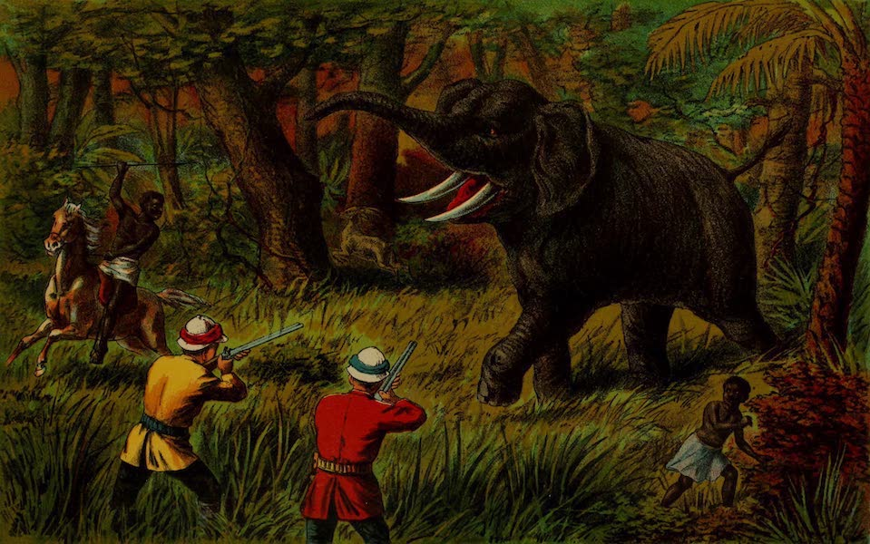 Stanley's Story - A Surprise in the Jungle (1890)