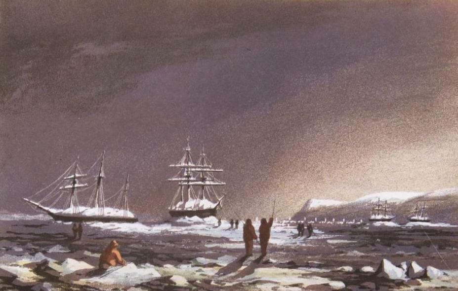 Stray Leaves from an Arctic Journal - Sledge Travelling (1852)