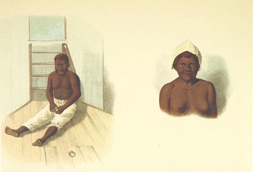 Sudsee-Erinnerungen - Eingeborener (N. Britannien) and Frau (N. Jrland) (1883)