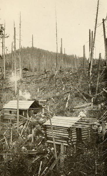 Sunset Canada, British Columbia and Beyond - Beginnings of Vancouver Island Town (1918)