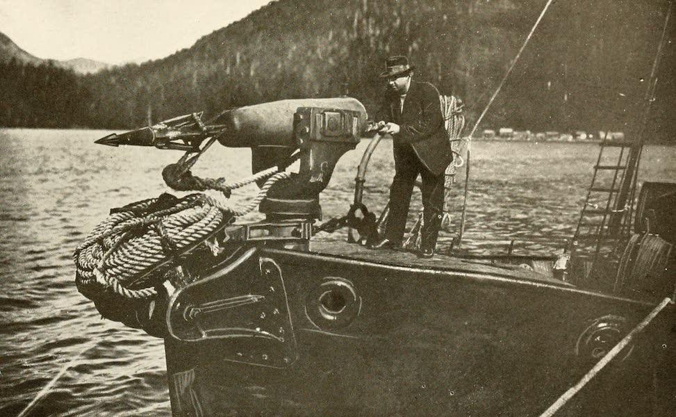 Sunset Canada, British Columbia and Beyond - Firing Svend Foyu Harpoon Gun (1918)