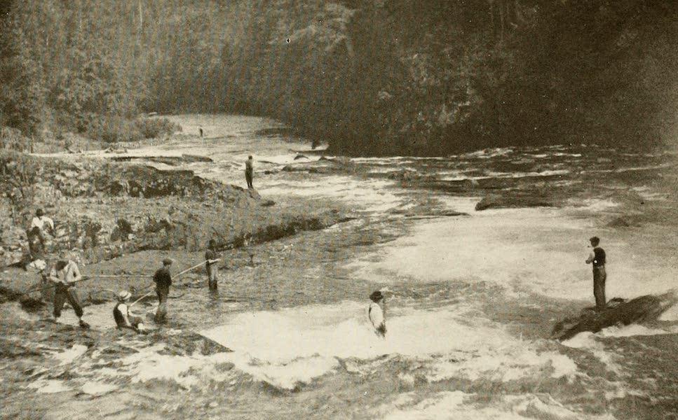 Sunset Canada, British Columbia and Beyond - Salmon Fishing (1918)