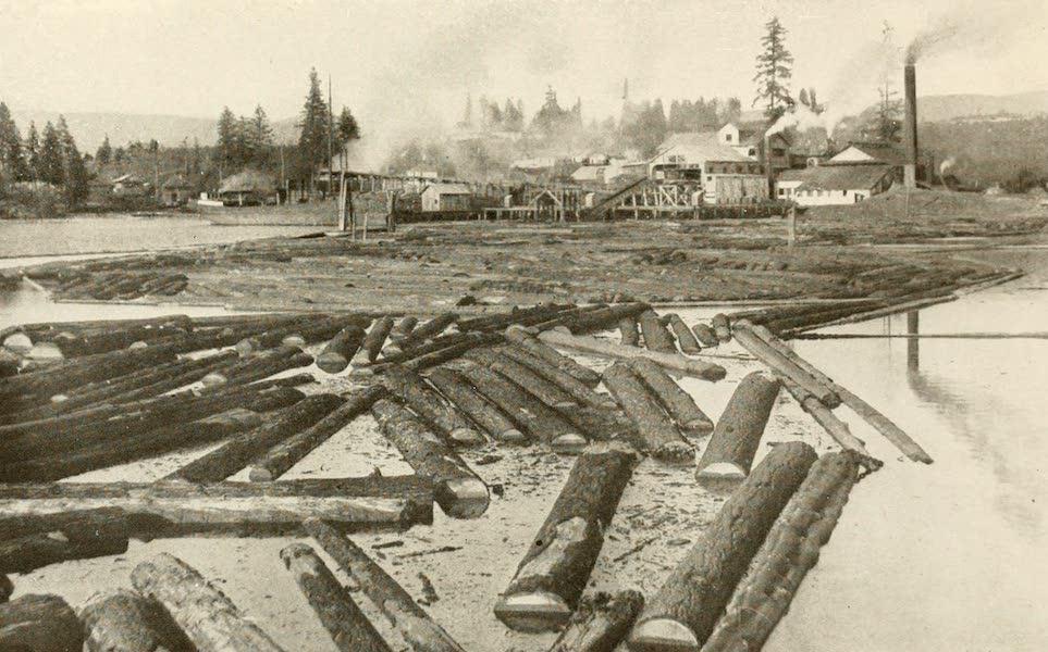 Sunset Canada, British Columbia and Beyond - Sawmill, Alberni Canal (1918)