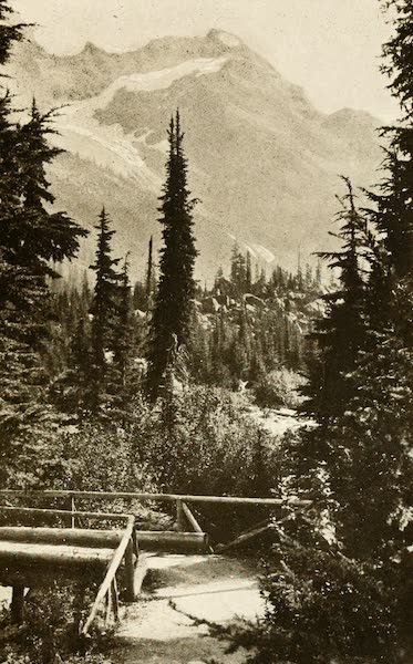 Sunset Canada, British Columbia and Beyond - Trail to the Great Glacier (1918)