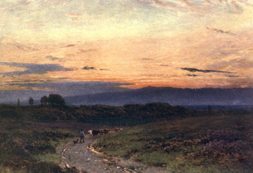Surrey Painted and Described - A Summer's Eve, Milford Common (1906)