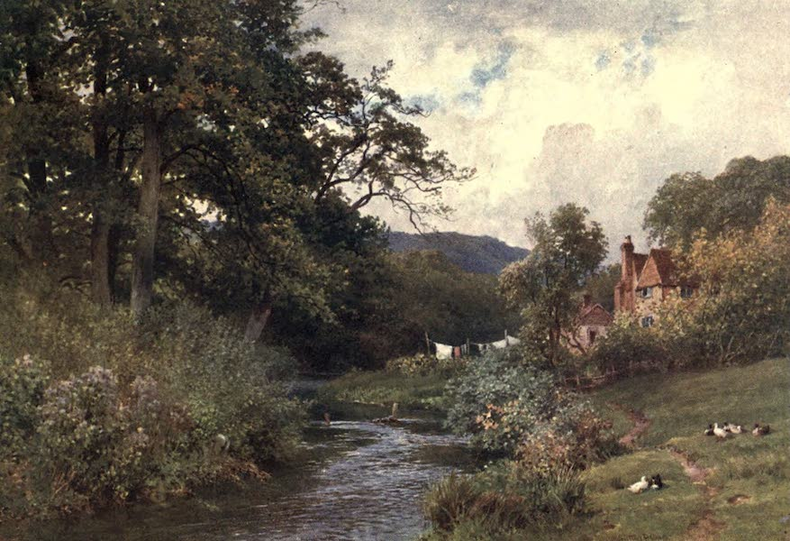 Surrey Painted and Described - A Stream near Shalford (1906)