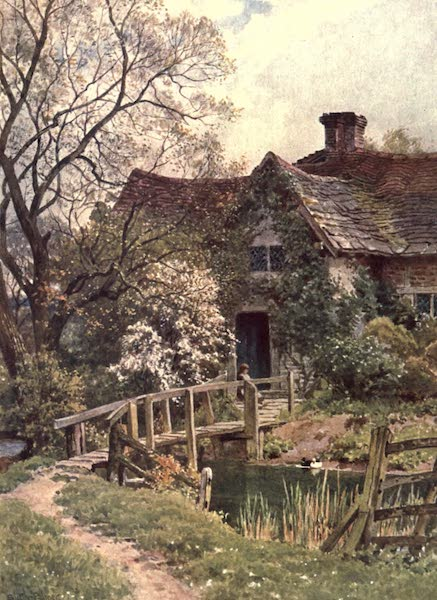 Surrey Painted and Described - An Ancient Cottage near Ockley (1906)