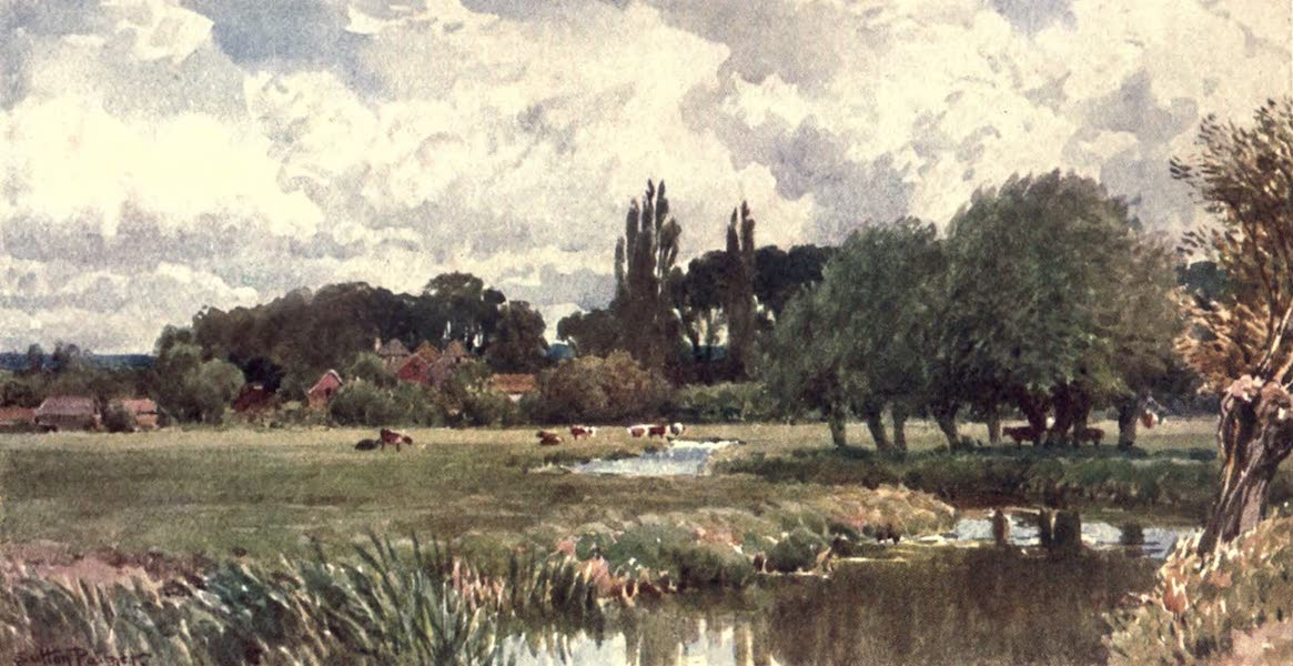 Surrey Painted and Described - The Meads, Farnham (1906)