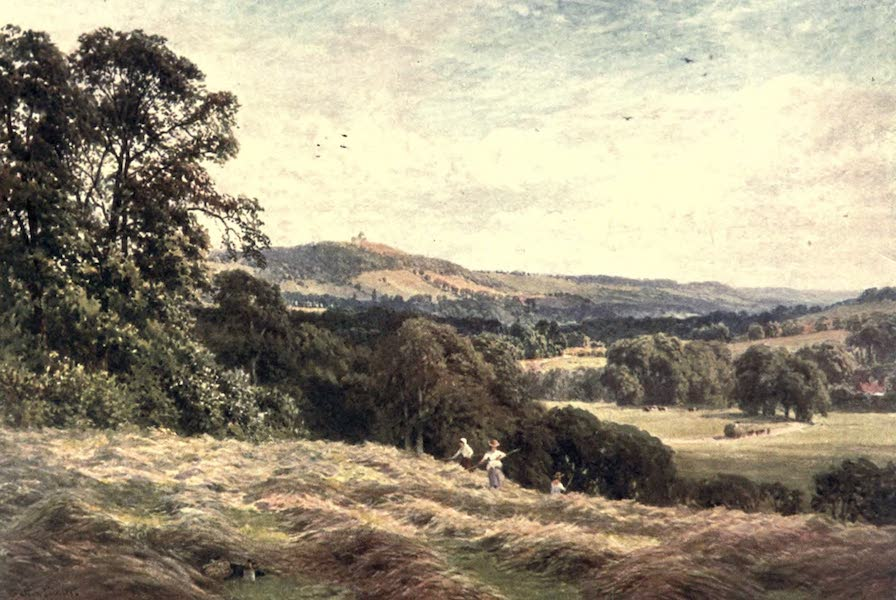 Surrey Painted and Described - A Hayfield, Wonereh (1906)