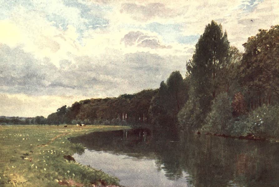 Surrey Painted and Described - The River Wey, near Ripley (1906)
