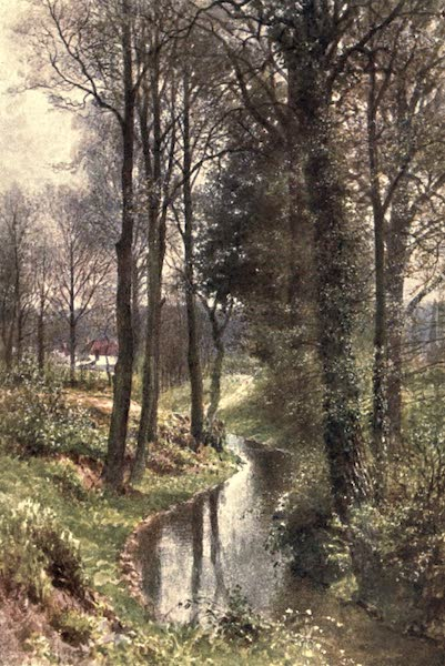 Surrey Painted and Described - Water Lane, near East Horsley (1906)