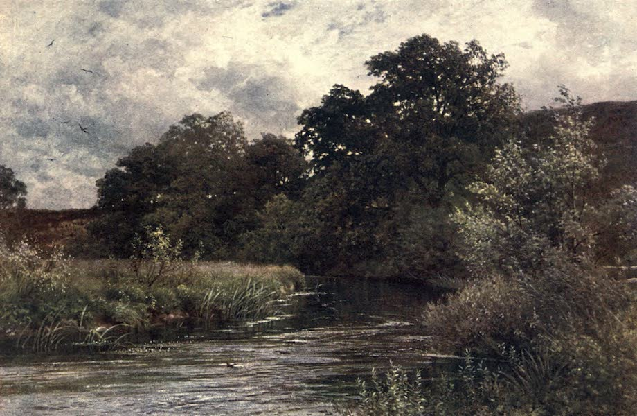 Surrey Painted and Described - The Wey at Hankley Common, near Tilford (1906)