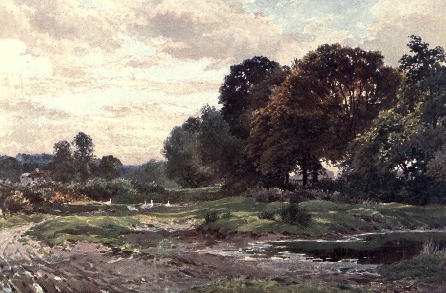 Surrey Painted and Described - A Corner of Esher Common (1906)