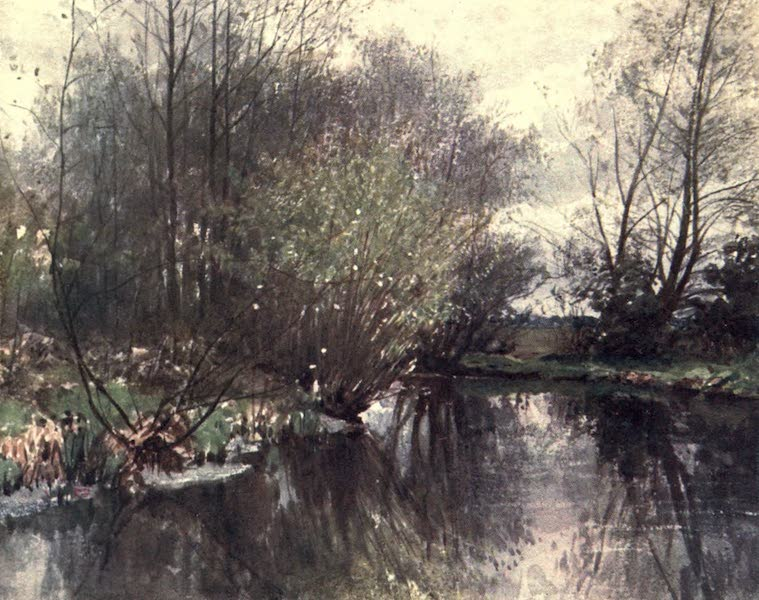 Surrey Painted and Described - The Mill Stream, Ockham (1906)