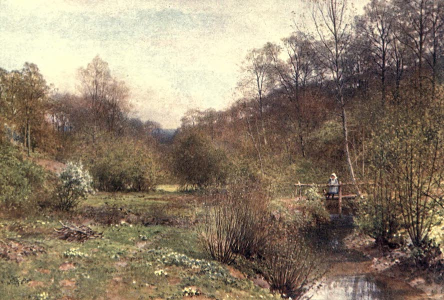 Surrey Painted and Described - The Budding Year, Ockley (1906)