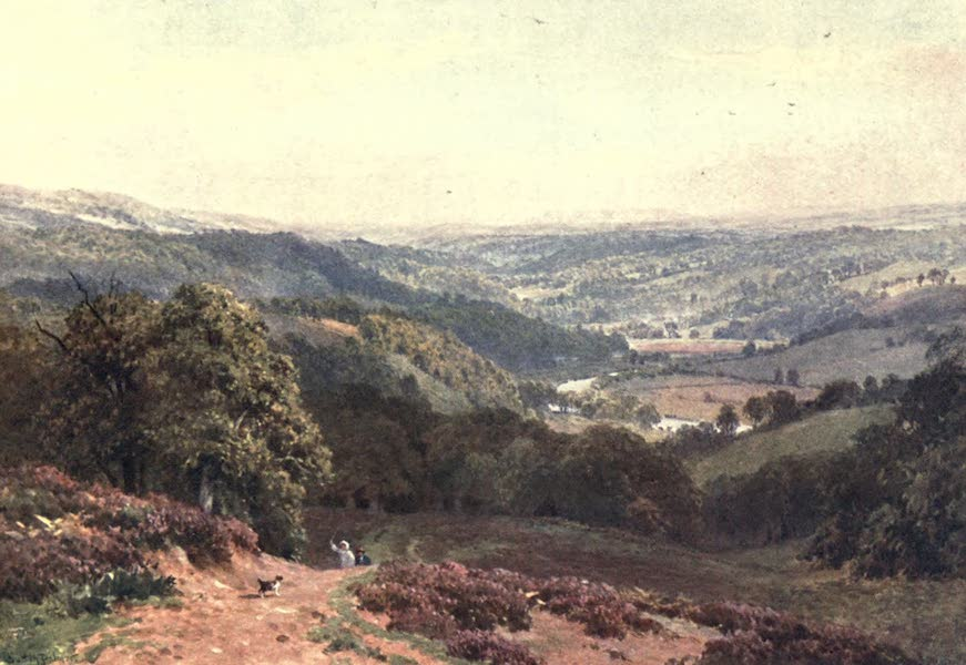 Surrey Painted and Described - Vale of Albury, from St. Martha's Hill (1906)