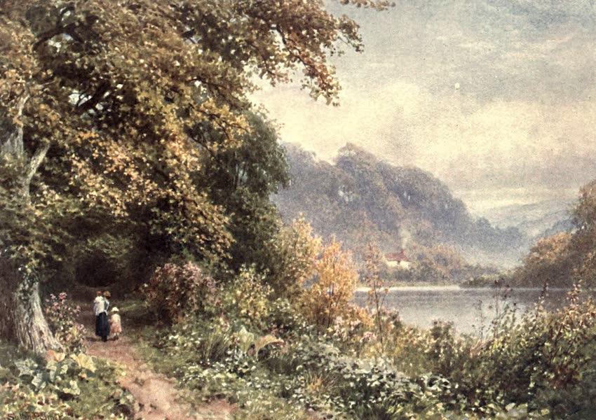 Surrey Painted and Described - Near Albury (1906)