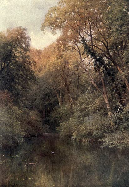 Surrey Painted and Described - The Silent Pool, Albury (1906)