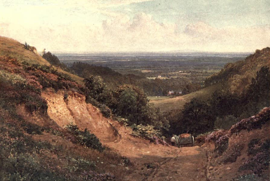 Surrey Painted and Described - The Gravel Pit, above Gomshall (1906)