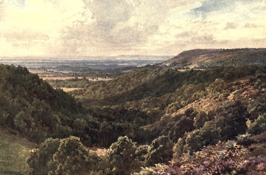 Surrey Painted and Described - From the Hills above Peaslake, near Gomshall (1906)