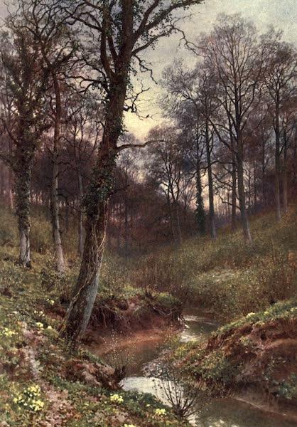 Surrey Painted and Described - Evening Solitude, Ockley (1906)