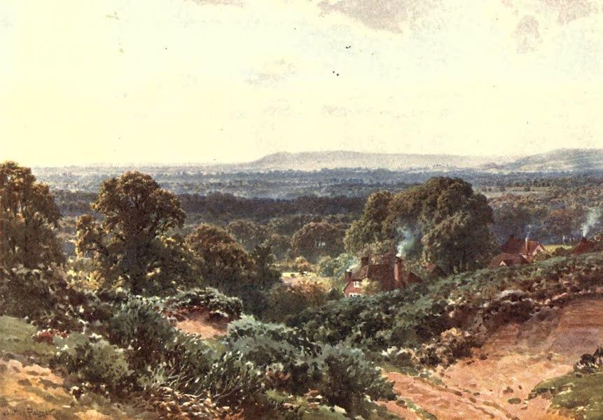 Surrey Painted and Described - Sandhills, looking towards Blackdown (1906)