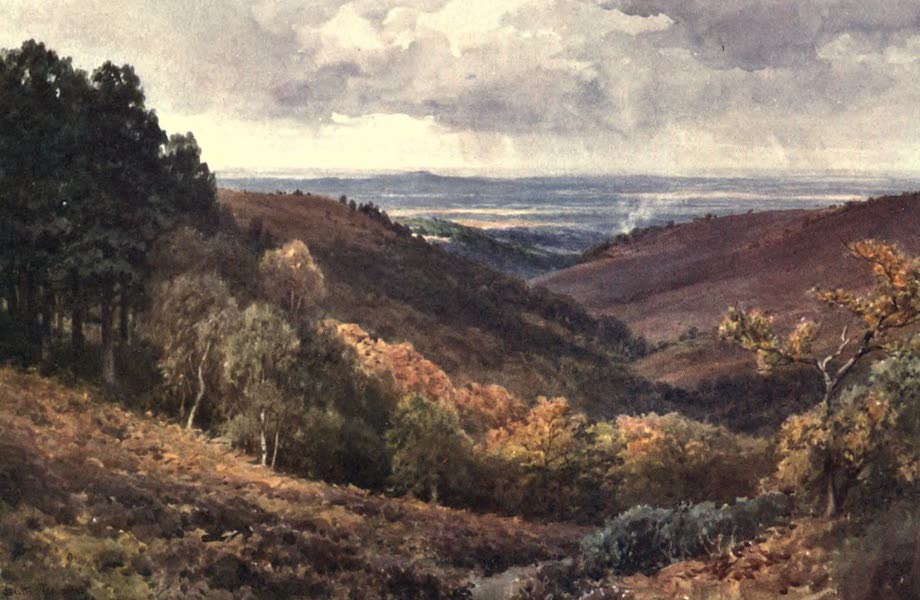 Surrey Painted and Described - Hindhead - The Punchbowl - Looking North (1906)