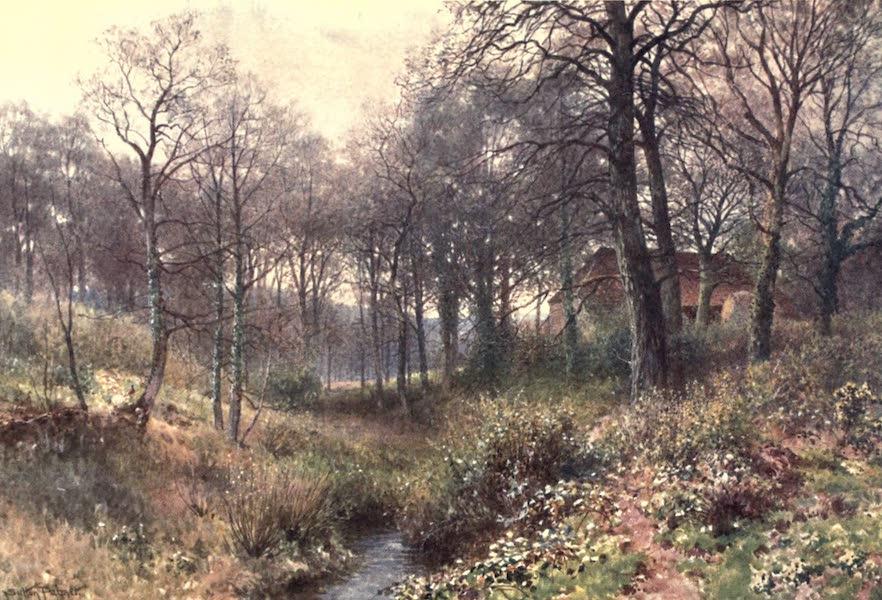 Surrey Painted and Described - The Farm midst the Woods, near Haslemere (1906)