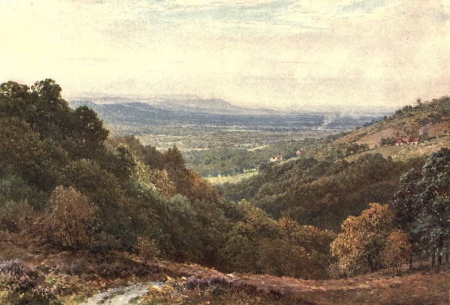 Surrey Painted and Described - A Wide Stretch, from the Gibbet, Hindhead (1906)