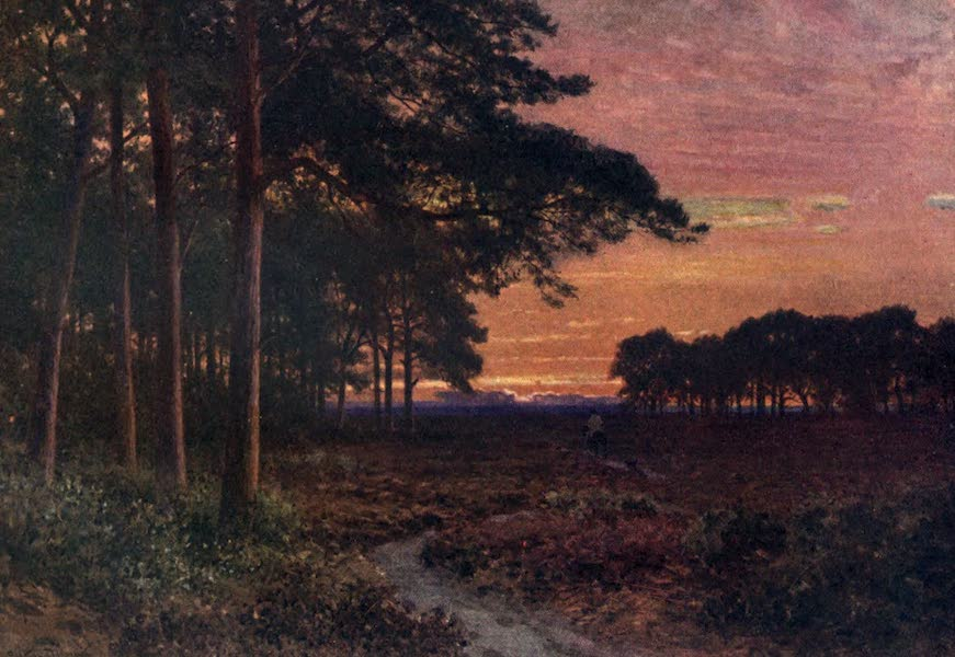 Surrey Painted and Described - Evening on the Moors, Hindhead (1906)