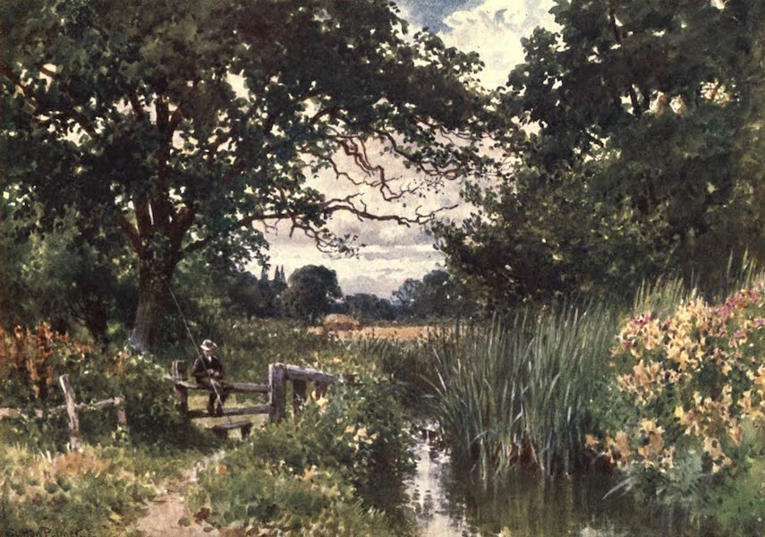 Surrey Painted and Described - Near Chobham (1906)