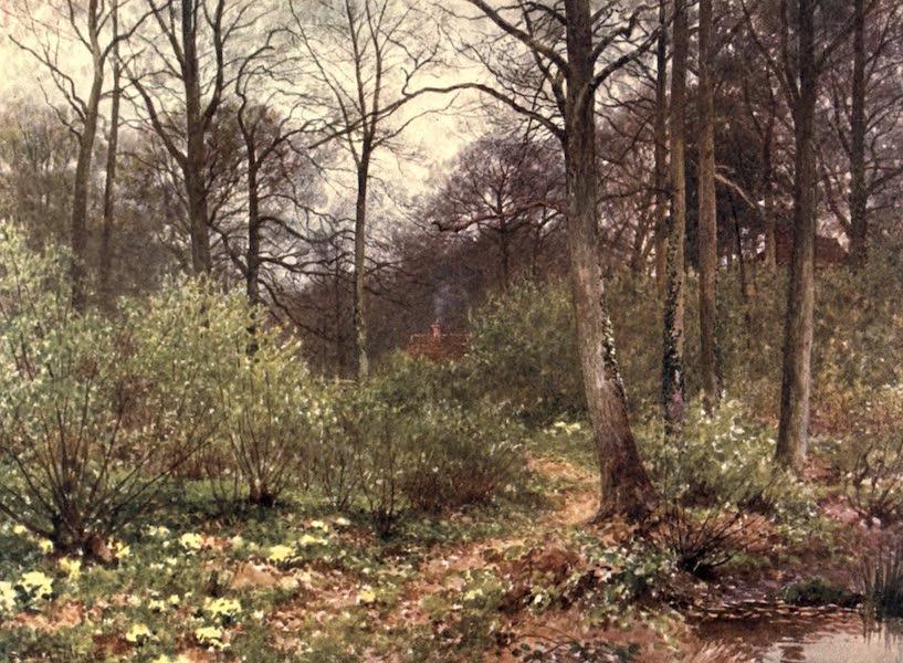 Surrey Painted and Described - The Gamekeeper's Cot (1906)