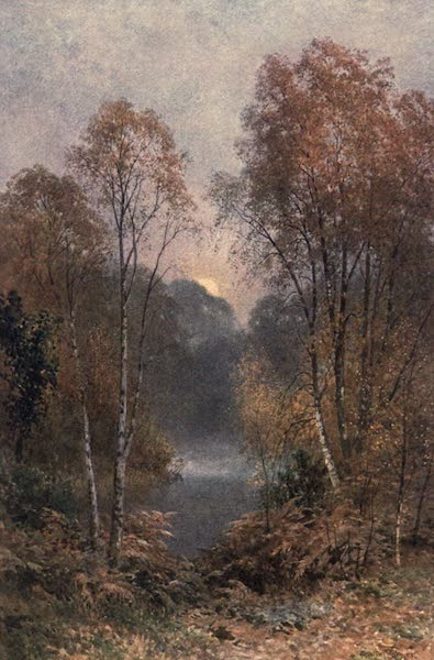 Surrey Painted and Described - The Autumn Moon (1906)