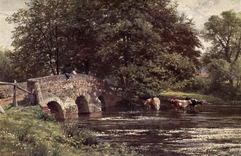 Surrey Painted and Described - The Rother (1922)