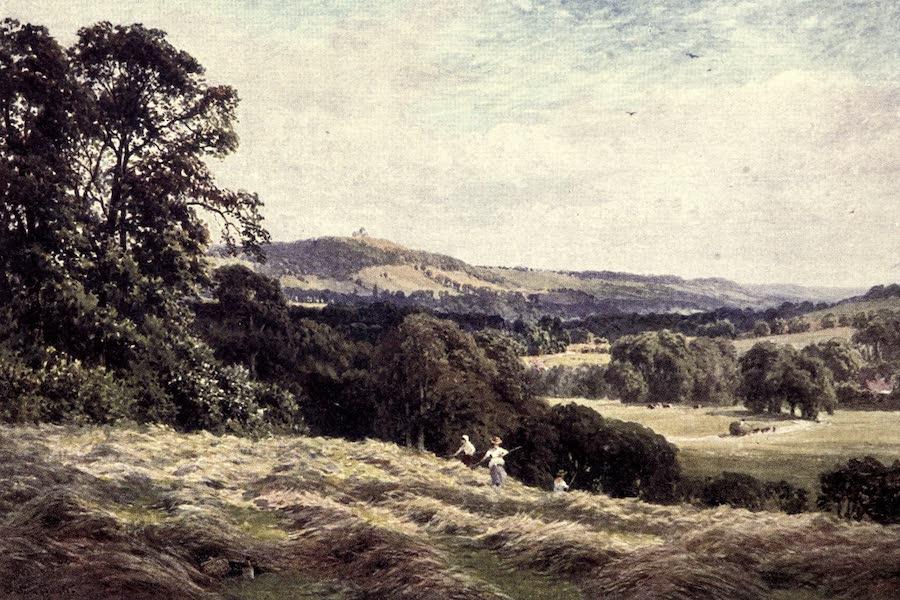 Surrey Painted and Described - Cold Waltham (1922)