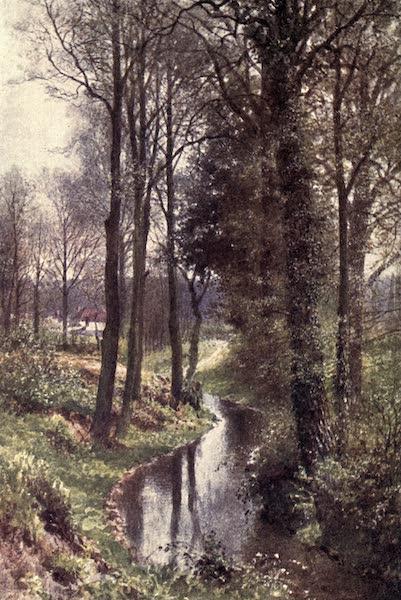 Surrey Painted and Described - Coates (1922)