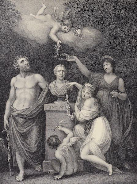 Temple of Flora - Cupid, Flora, Ceres, and Esculapius Honouring the Bust of Linnaeus (1812)