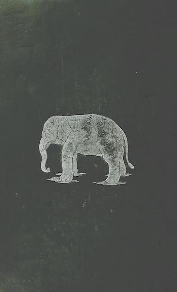 Temples and Elephants - Back Cover (1884)