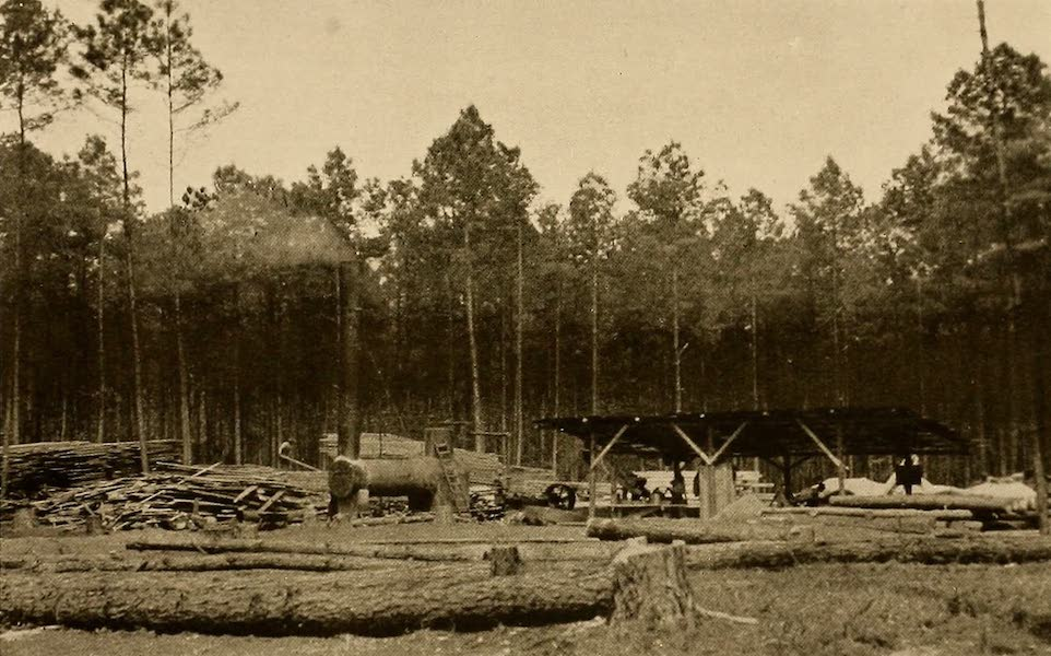 Texas, the Marvellous, the State of the Six Flags - Saw Mill, East Texas (1916)