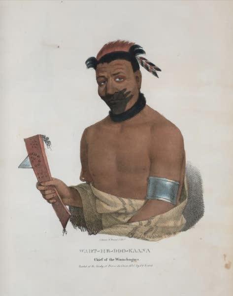 The Aboriginal Port Folio - Wadt-he-doo-kaana, Chief of the Winnnebagoes (1836)