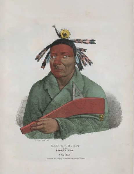 The Aboriginal Port Folio - Waa-top-e-not or the Eagle's Bed, a Fox Chief (1836)