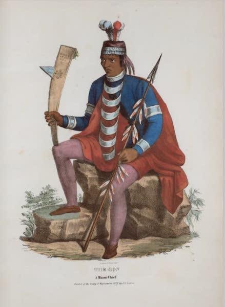 The Aboriginal Port Folio - The Son, a Miami Chief (1836)